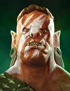 chopper - champion in raid shadow legends
