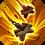 hefty flail skill for Bulwark in raid shadow legends